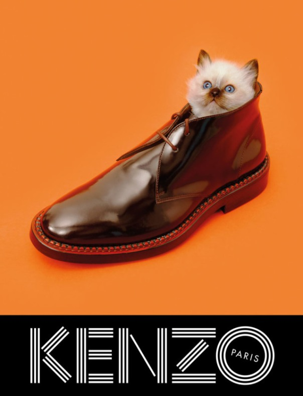 xkenzo-fall-campaign5.jpg,qresize=640,P2C834.pagespeed.ic.NHoajBC7EF