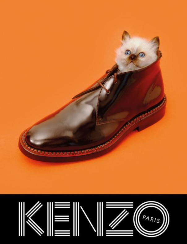 xkenzo-fall-campaign5.jpg,qresize=640,P2C834.pagespeed.ic.NHoajBC7EF